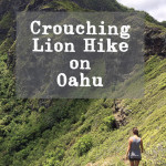 Crouching Lion Hike, the North Shore's hidden gem.