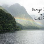Dolphins, and Penguins, and Seals, oh my! Finding the calm on Doubtful Sound.