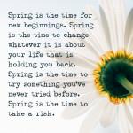 On spring & new beginnings.