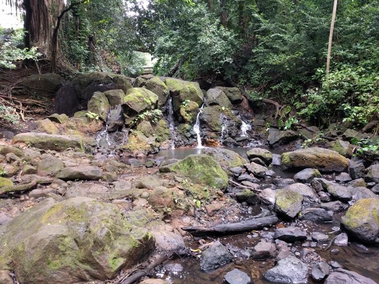 jackass ginger pool trail - judd memorial trail oahu (10 of 11)